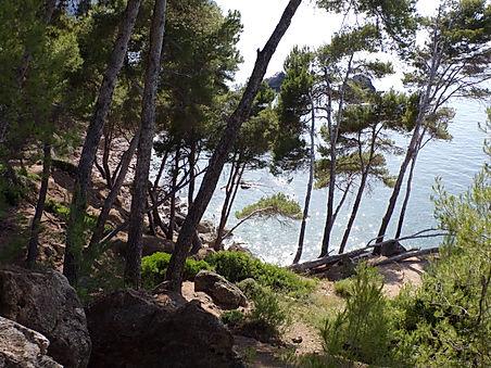 Lluclacari plage majorque