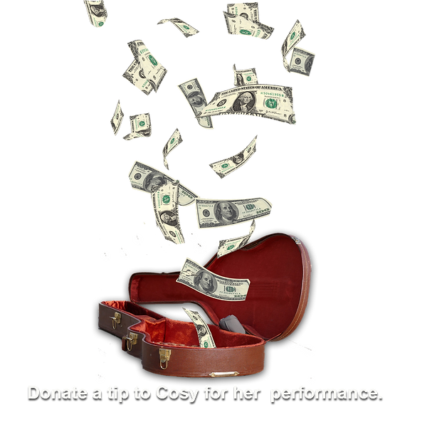 Donate Cosy a tip screen.png