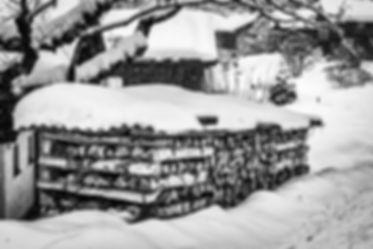 Du bois devant la maison-1.JPG