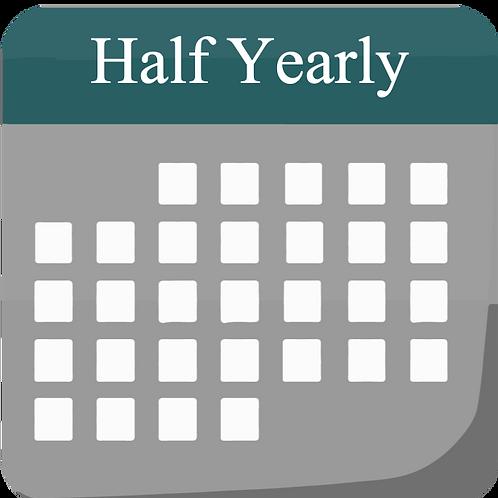 Half-Yearly plan