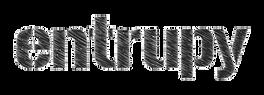 entrupy-logo-bw.png