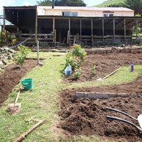 Garden view up towards the cowshed.jpg