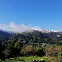 Snow dusting from deck view.jpg