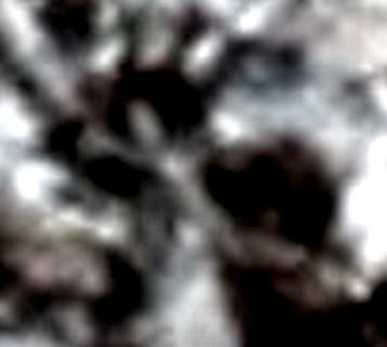 ВК МБ 129, 16-1.jpg