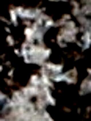 ВК МБ 129, 2  Женское лицо.jpg