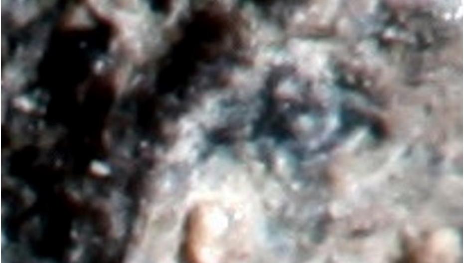 1. 5  Проект Внеземные Цивилизации (Дар Небес), состав