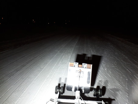 February 16 grooming update:  Powder on top of corduroy!