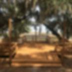 overlook2.jpg
