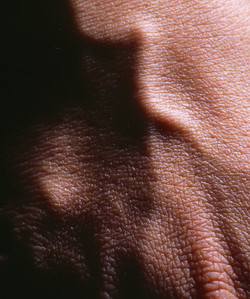 The Landscape Met In My Body-05, 2000