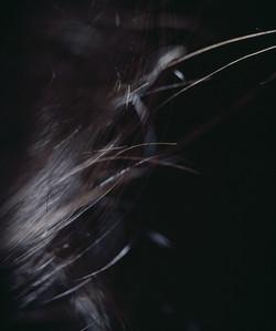 The Landscape Met In My Body-04, 2000