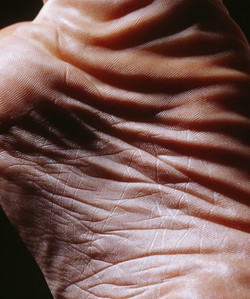 The Landscape Met In My Body-01, 2000