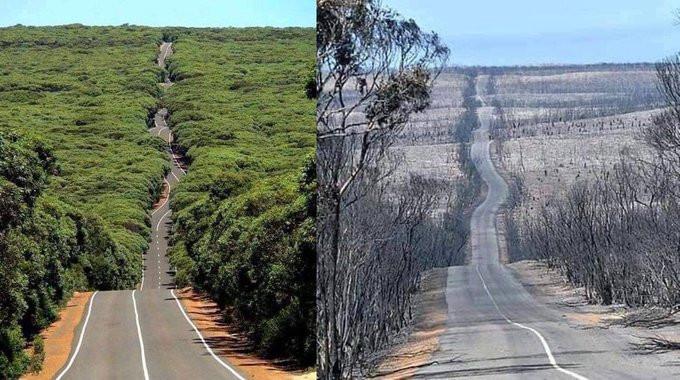 Une route sur les Îles Kangourou - avant/après...
