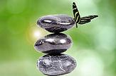 Naturopathe paris La comprendre grands principes