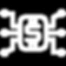 noun_FinTech_1233393_FFFFFF.png