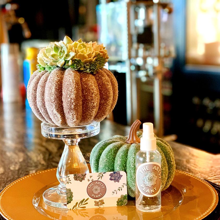 SunDay FunDay - Succulent Sugar Pumpkin DIY Class