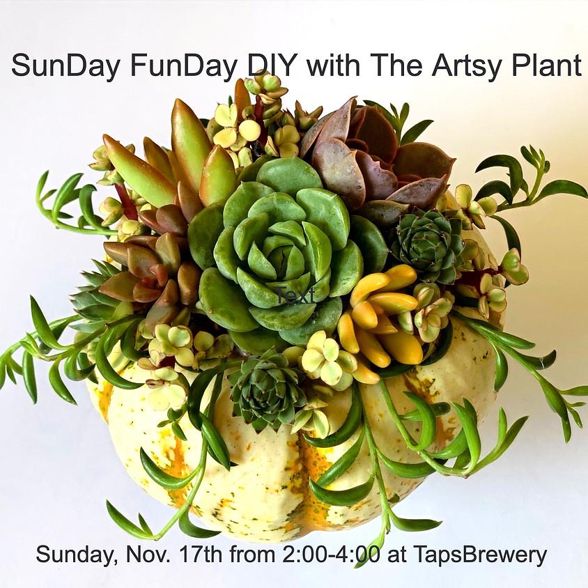 SunDay FunDay - DIY Succulent Pumpkin Workshop