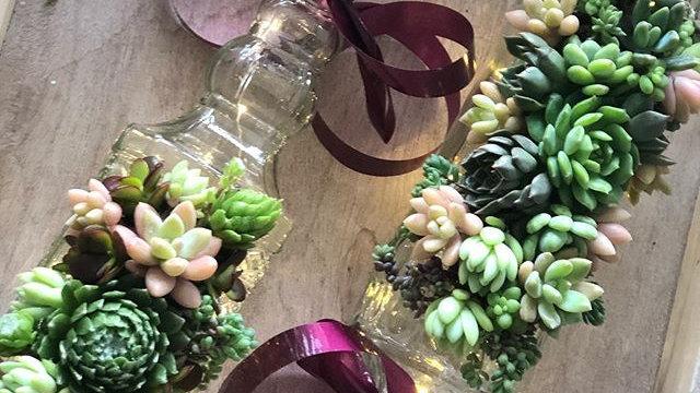 Illuminated Fresh Succulent Bottle
