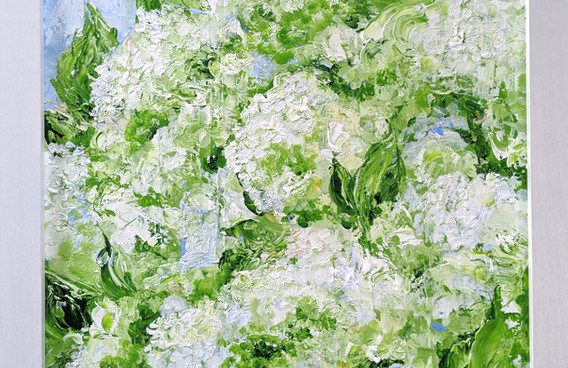Limelight Hydrangea 2