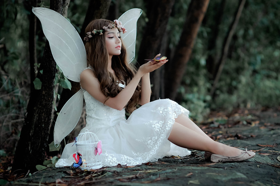 Fantasy Fairy in Forest Photo by Tú Nguy