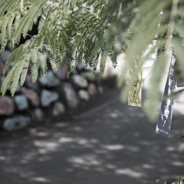 소성리 파란나비평화광장