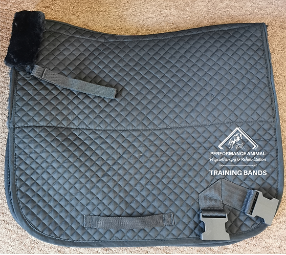 PAP Deluxe Fleece-lined Universal System
