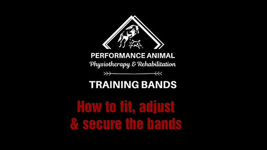 PAP Training Bands System - How to fit, adjust and secure the bands
