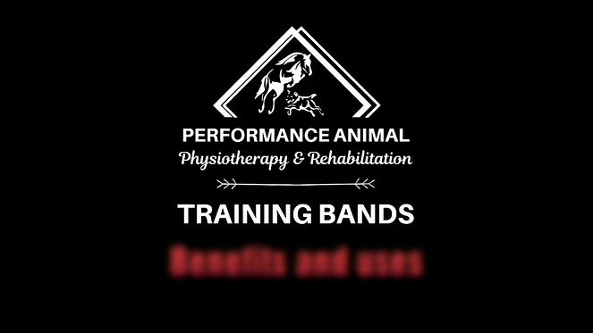 Benefits and Uses of the PAP Training Bands System