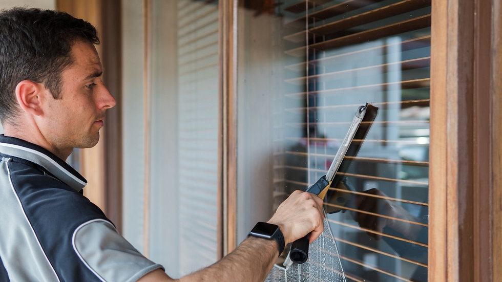 Cleansmart cleaning windows