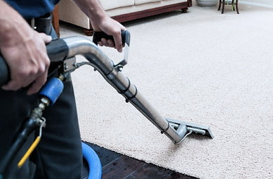 carpet cleaning carpet.jpg