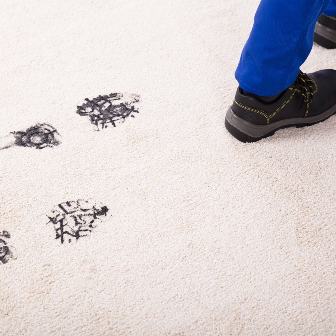 Muddy Prints on the Carpet |Cleansmart