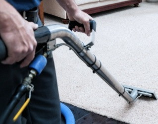 Cleansmart Carpet Cleaning