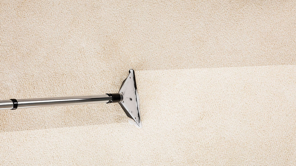 Steam Cleaning Carpet by Cleansmart