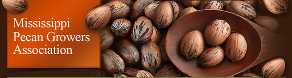 MS Pecan Growers Assn.png