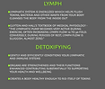 rebounding health benefits for lymph/immune system & detoxing