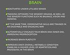 rebounding health benefits for the brain