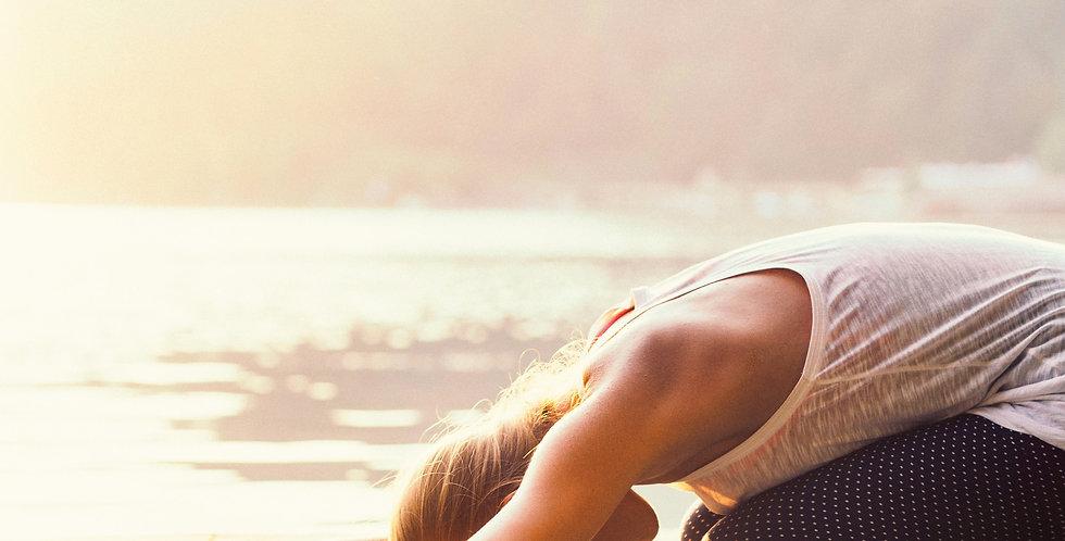 Beginner Yoga Online (Adults)