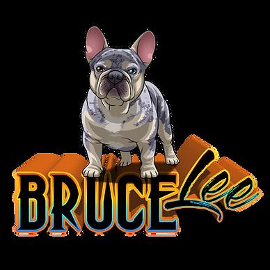 BruceLeetoonTransparent (1).png