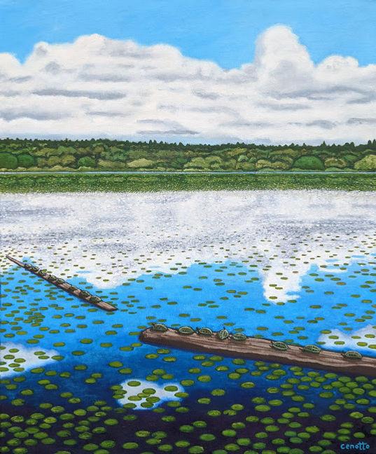green lake turtles.jpg