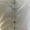 Thumbnail:  Sèraphine Maternity broderie summer dress Uk12 rrp£65
