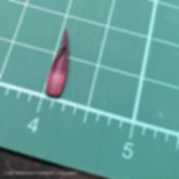 The Confectionery Gallery Blog | Studying a Tulip to Recreate in Sugar - dissected variegated red orange yellow tulip top of stamen detail on green measuring mat