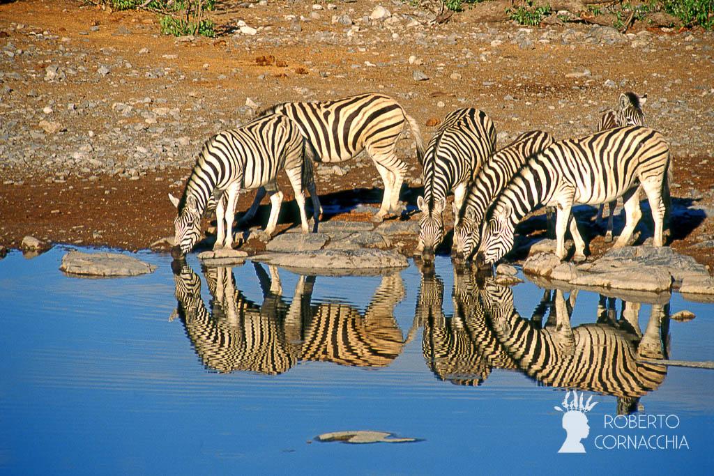 Namibia2007-064