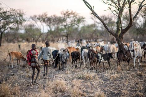 UgandaKaramoja-051.jpg