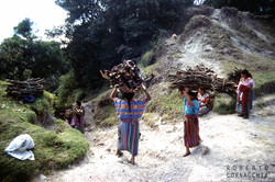 Guatemala95057.jpg