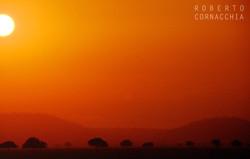 Tanzania94174.jpg