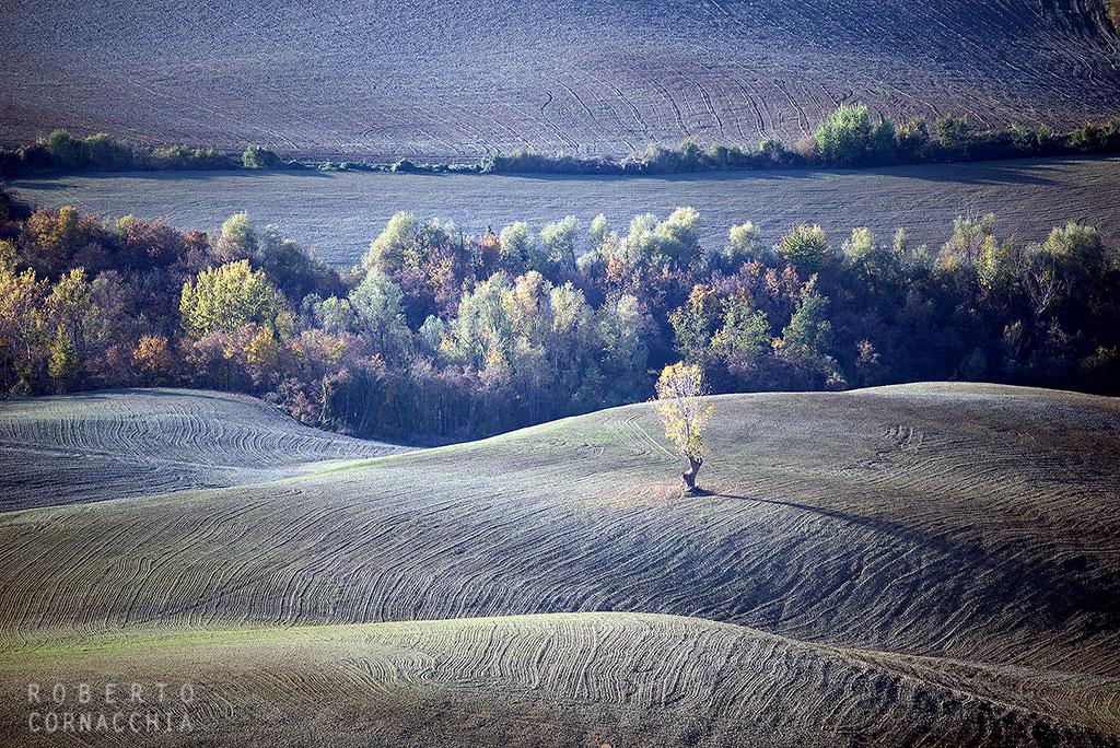 Autunno sulle colline imolesi