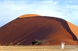 Namibia2007-022