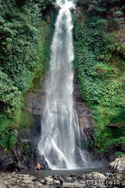 Bali95179.jpg
