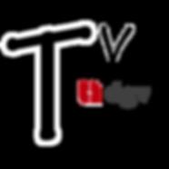 logo dgv tv.png