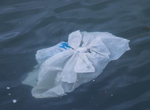 Wie vermeide ich Plastiktüten.