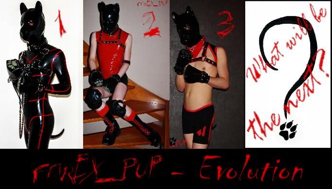 Farex_Pup Evolution